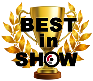 Best in Show at CES 2019 - 2019