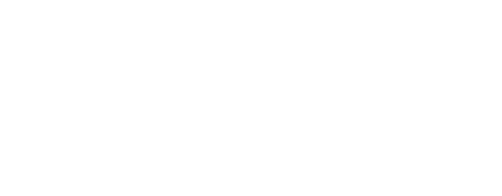 Wilson Audio Acoustic Diode